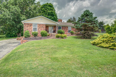 Bullitt County Single Family Home For Sale: 238 Salt River Dr