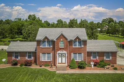 Shepherdsville Single Family Home For Sale: 607 Cundiff Ln