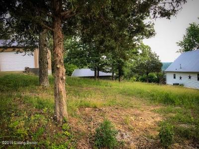 Leitchfield, Hardinsburg, Irvington, Elizabethtown, Clarkson, Caneyville, Falls Of Rough, Beaver Dam, Brownsville, Bee Springs, Cecilia, Mcdaniels, Garfield, Custer, Mammoth Cave, White Mills, Brandenburg Residential Lots & Land For Sale: 825 Lakeview Cir