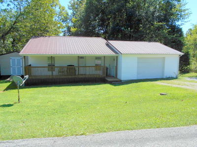 Caneyville Single Family Home For Sale: 2994 Falls Of Rough Rd