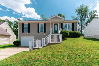 Elizabethtown Single Family Home For Sale: 208 Vineyard Rd