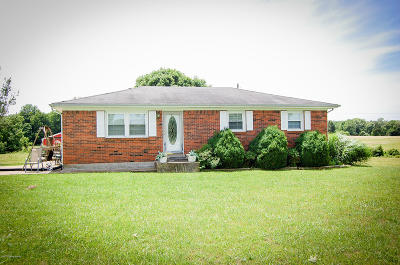 Leitchfield Single Family Home For Sale: 3605 Owensboro Rd