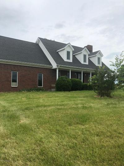 Henry County Single Family Home For Sale: 8550 Bethlehem Rd