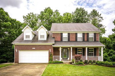 Single Family Home For Sale: 9104 Bingham View Ct