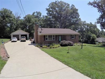 Shepherdsville Single Family Home For Sale: 154 Lakeview Trail
