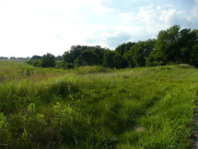 Spencer County Residential Lots & Land For Sale: 406B Bowman Ln