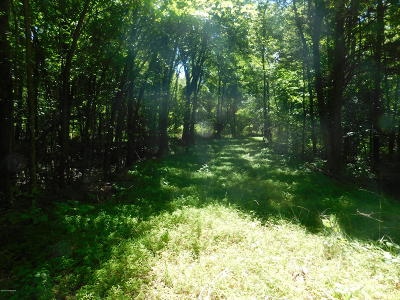Caneyville Residential Lots & Land For Sale: 2700 Duvall Rd