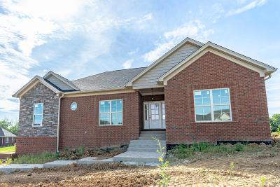 Shelbyville Single Family Home For Sale: 1070 Morning Glory Ln