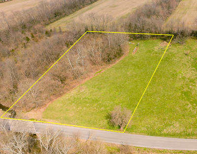 Shelbyville Residential Lots & Land For Sale: Tract 2 Benson Pike