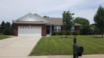 Nelson County Single Family Home For Sale: 148 Hudson Dr