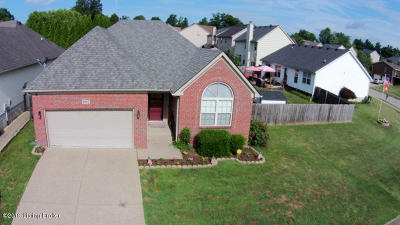 Louisville Single Family Home For Sale: 9802 Collier Ln