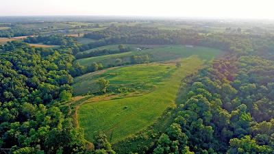 Henry County Farm For Sale