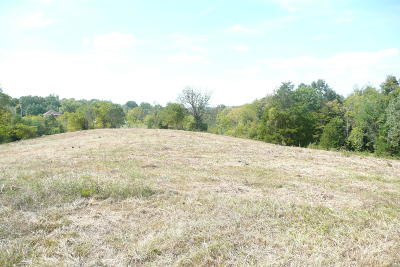 Taylorsville Residential Lots & Land For Sale: 109 Chadwick Dr