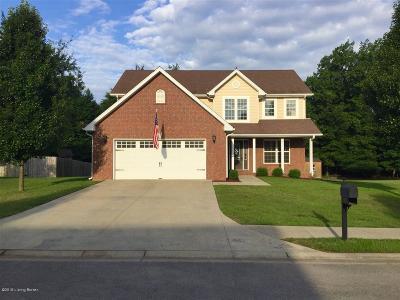 Elizabethtown Single Family Home For Sale: 132 W Mandarin Ct