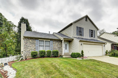 Single Family Home For Sale: 7323 Spring Run Dr