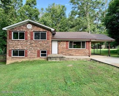 Elizabethtown Single Family Home For Sale: 199 McMillen Dr