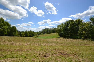 Oldham County Residential Lots & Land For Sale: 2412 E Highway 22