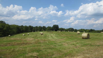 Henry County Farm For Sale: 408 Penny Winkle Rd