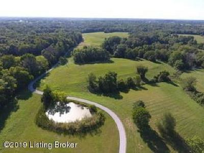 Henry County Farm For Sale: 3700 E Hwy 42