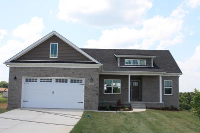 Single Family Home For Sale: 101 Reagan Dr