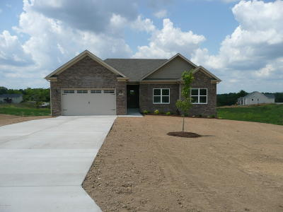 Single Family Home For Sale: 127 Reagan Dr