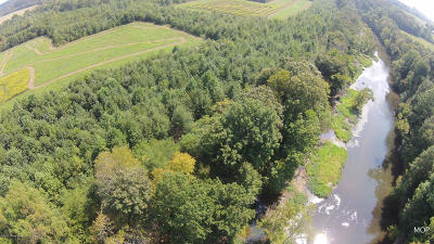 Campbellsville Residential Lots & Land For Sale: 1480 Whitewood Rd