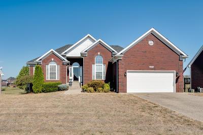 Mt Washington Single Family Home For Sale: 293 Crimson Creek Dr