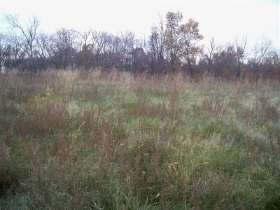 Residential Lots & Land For Sale: Blueberry Hill Lot #35