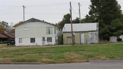 Sturgis Commercial For Sale: 126 N Monroe St