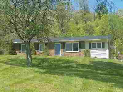 Sturgis Single Family Home For Sale: 371 Ben Dyer Rd