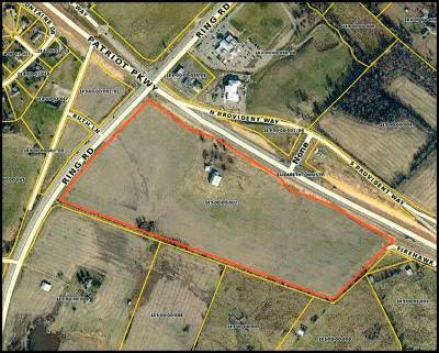 Elizabethtown  Commercial For Sale: 1031 Ring Road #Patriot