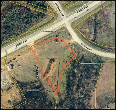 Elizabethtown Commercial For Sale: 1351 Ring Road #Buford L