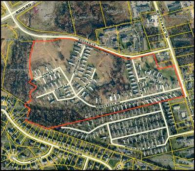 Elizabethtown Commercial For Sale: 1302 Woodland Drive
