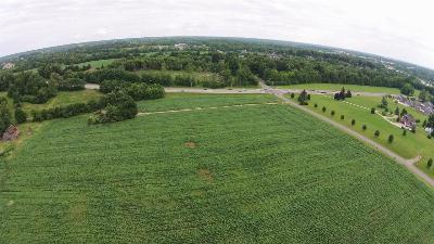 Elizabethtown  Commercial For Sale: 1305 Pear Orchard Road