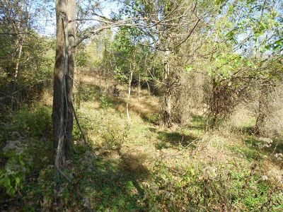Meade County Residential Lots & Land For Sale: Hesler Lane