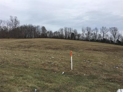 Elizabethtown  Commercial For Sale: Lot 7 Ring Road