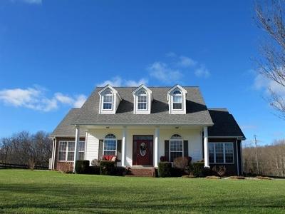Rineyville Single Family Home For Sale: 6371 Salt River Road