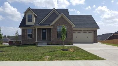 Bullitt County Single Family Home For Sale: 173 Stone Meadows Drive
