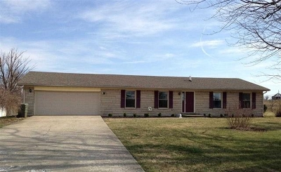 Rineyville Single Family Home For Sale: 3159 Rineyville Big Springs Road