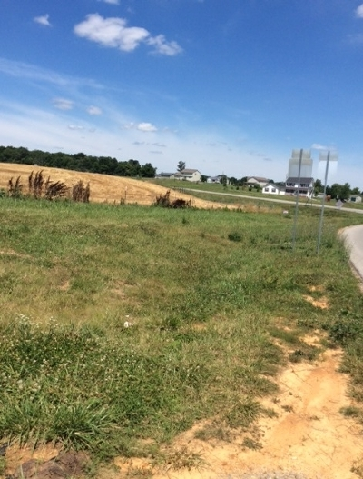Vine Grove Residential Lots & Land For Sale: Fort Avenue