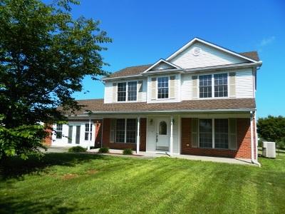Rineyville Single Family Home For Sale: 117 Huntington Lane