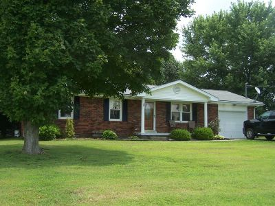 Rineyville Single Family Home For Sale: 517 Deckard School Road