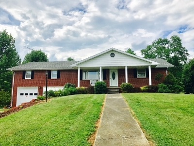 Campbellsville Single Family Home For Sale: 1126 Tebbs Bend Road