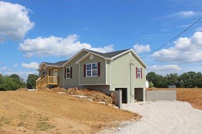 Brandenburg Single Family Home For Sale: 216 Point Salem Drive