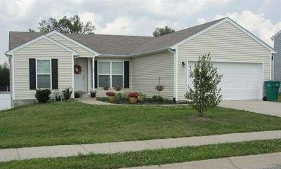 Elizabethtown Single Family Home For Sale: 203 Greenleaf Drive