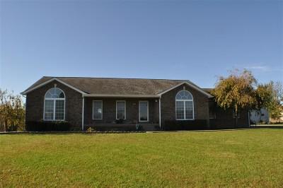 Brandenburg Single Family Home For Sale: 160 Jim Barr Road