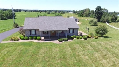 Brandenburg Single Family Home For Sale: 4825 Old State Road