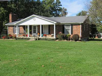 Brandenburg Single Family Home For Sale: 302 Homeview Drive