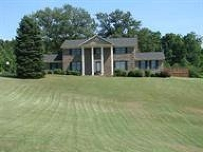 Rineyville Single Family Home For Sale: 2539 Rineyville Big Springs Road