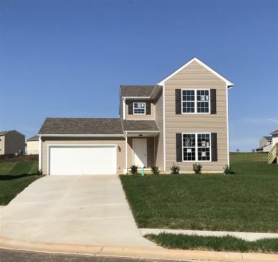 Elizabethtown Single Family Home For Sale: 102 Dewberry Court